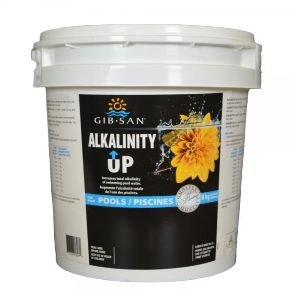 Pool Alkalinity Up